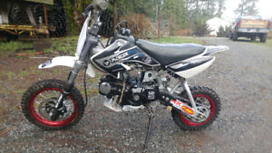 125 Pitster Pro