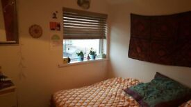 double room in a 3 bed house in Splott - LGBT household