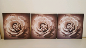 Set of Three Sepia Rose Canvases - as new