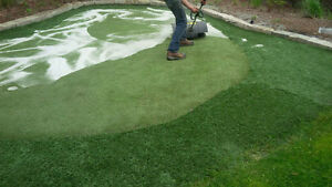 Synthetic Turf Reconditioning and Putting Greens London Ontario image 6
