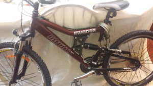 Bicycle  ........infiniti.....or best offer