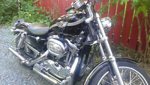 100th Anniversary Harley for sale