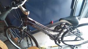 Women Nakamura bike
