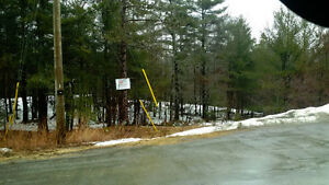 EXCELLENT BUILDING SPOTS ON THIS 3.58 ACRE LOT