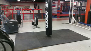 Attention Personal Trainers - Train/Grow client base here! Kitchener / Waterloo Kitchener Area image 6