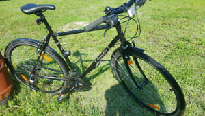 Brodie Bolt Bicycle (Large-56cm)