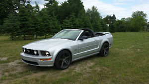 2008 Ford Mustang Cuire Cabriolet