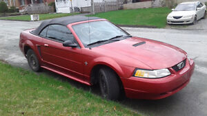 2000 Ford Mustang decapotable