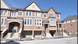 Short Term Rental. Brand New 4-bed Town House North Oshawa.$1750