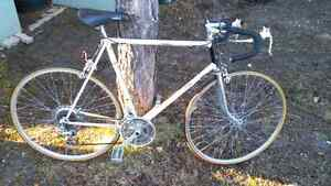 Late 70's Raleigh Record road bike for sale