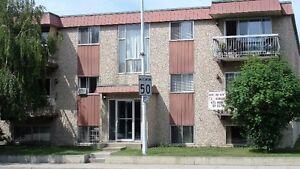 Large 1 bedroom suite in Quiet, Secure Adult Only Building Edmonton Edmonton Area image 1