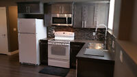 Executive basement apartment for rent. Very safe and very clean!