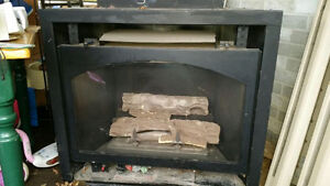Fireplace - Napoleon, natural gas.