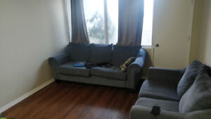 2 Bedroom apartment near Dalhousie & St. Mary's @ South Park St.
