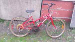 """Women's 24"""" mountain tour bicycle for sale"""