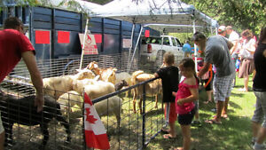 Mobile Petting Zoo for Birthdays/Seniors Homes/Special Events