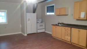 1 bedroom apt. in country setting