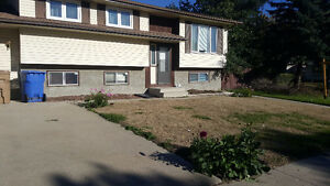 Fully renovated home in Normanview west with a huge corner lot