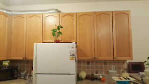 Hardwood Oak cabinets and doors for Kitchen