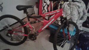 Succession de Annie:  Ses 2 vélos pas chers