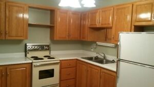 Large, Bright 1 Bedroom Suite in NW
