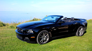 2014 Mustang GT Convertible 6 Speeds Low Milleage