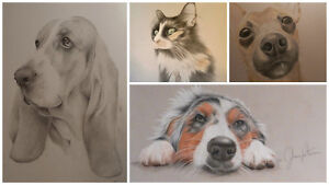Pet Portraits - Coloured starting at $175