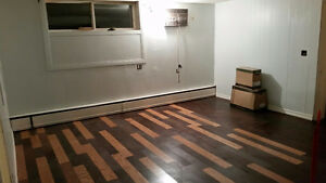 Very large 1000 sqft 2 BR apt. Newly renovated! Rosedale