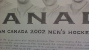 MEN'S 2002 TEAM CANADA PICTURE