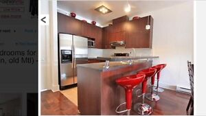 4 1/2 condo for rent Old Montreal w/ garage - $1000 credit!