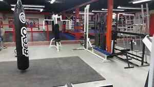 Titan Fitness & Nutrition - What's YOUR Reason? Kitchener / Waterloo Kitchener Area image 9