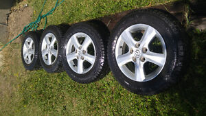 Winter challenger studded tires w/ Mazda rims
