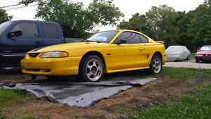 98 gt 5speed one owner. .oiled