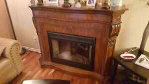 FS: Electrical fire place