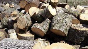 8 Bushcords Hardwood Log Rounds $1300 firewood
