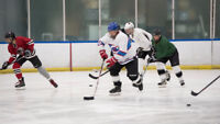 Adult Morning Hockey From 9:30am to 11:30am at the Vollmer