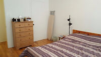 Large 3 1/2 apartment with free furniture - Laval