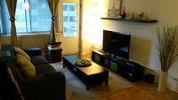 Partially Furnished 3 1/5 downtown apartment