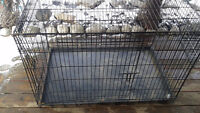 large cage 3 feet long,3 high,good condition