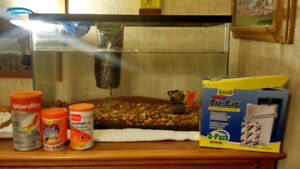 10G Fish Tank and Accessories