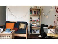 1 bedroom flat on Brixton Hill July-September short term let 1200/pcm