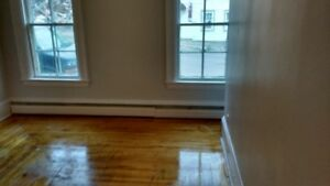 1 Bedroom Lower West - Heat and Lights $650