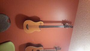 Godin A5 5 string acoustic electric fretless bass
