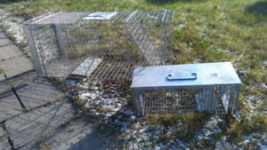LOST CAT? Animal Trap Cage