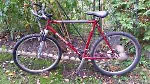 BIANCHI BIKE BICYCLE ROCK SHOX