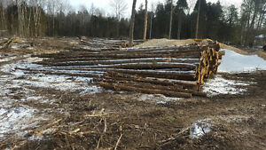 Fence posts white Cedar logs and posts