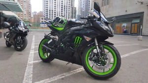2009 ZX6R Monster Energy Edition| RARE!