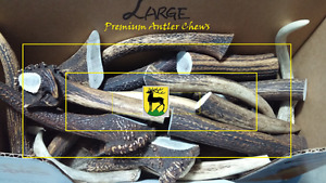 Fresh Antler Dog Chews (CWD Free!) Top quality
