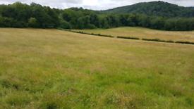 New season 2020, hay bales for sale