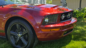 2008 Ford Mustang Convertible V6 NEW PRICE